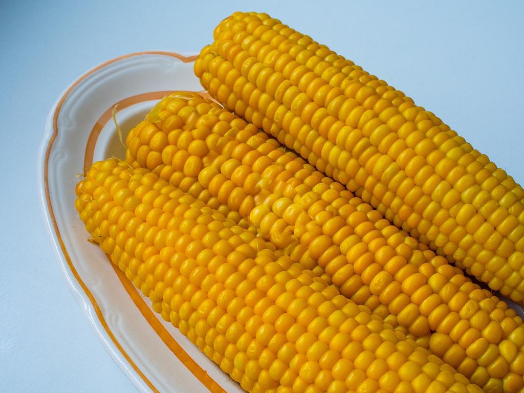 Как варить кукурузу в початках.